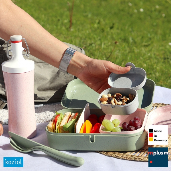 Koziol Lunchbox 'Pascal L Organic'