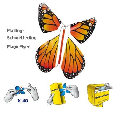 Mailing-Schmetterling-BL